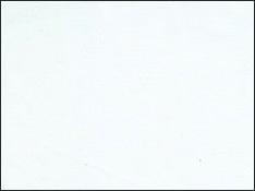 TUP-catalogue-colour-swatch-white